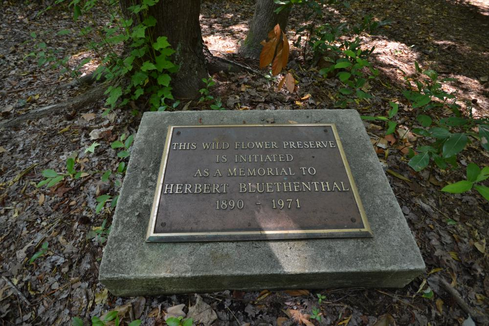 2014 photo of Bluethenthal Memorial