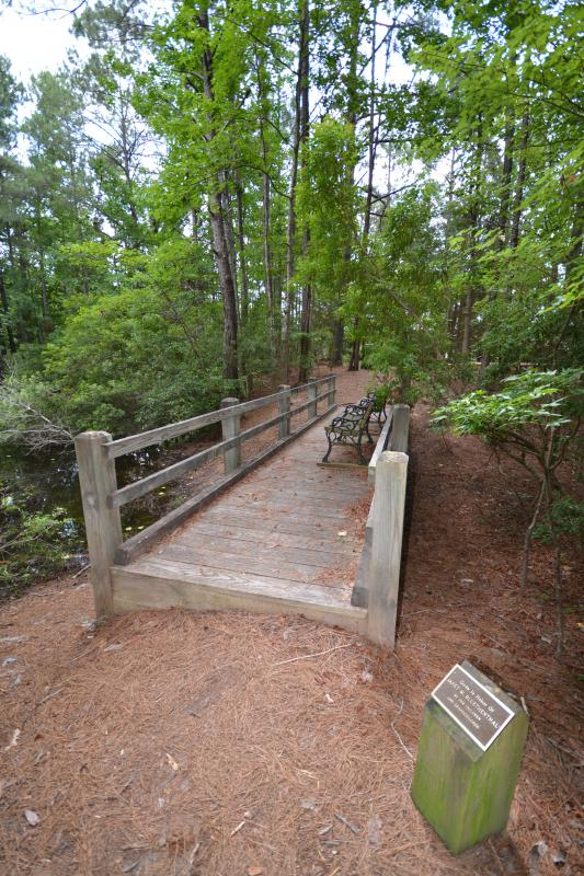 2014 photo of bench area in Bluethenthal Preserve