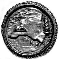 NCLT Medallion