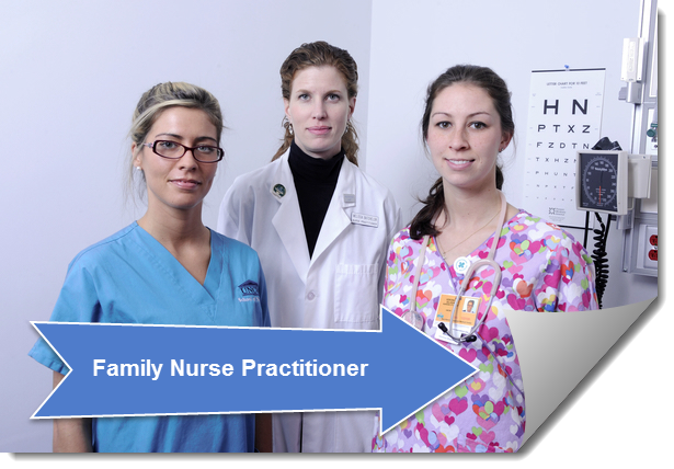 Link to Family Nurse Practitioner Guide